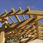 Tetraleaf - Sawn Teak Veneers, Landry Design Group